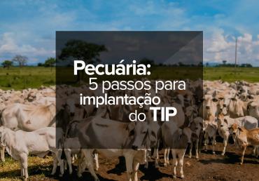 Pecuária: 5 passos para implantação do TIP